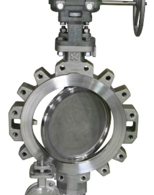 Double Offset High Performance Butterfly Valve – HIPPO